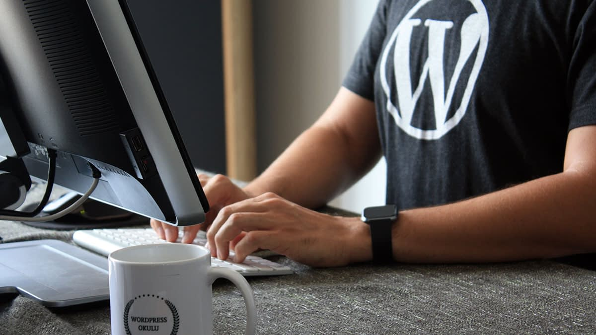 What is WordPress? A Complete Guide on Everything You Should Know in 2021